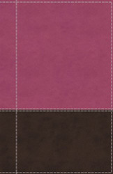 NIV Reference Bible Giant Print Leathersoft Pink/Brown Red Letter Edition