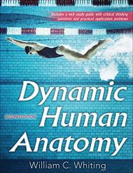 Dynamic Human Anatomy
