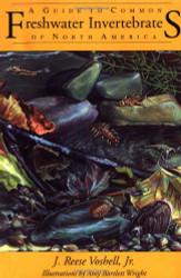 Guide To Common Freshwater Invertebrates Of North America