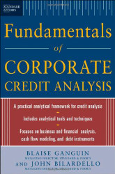 Standard And Poor's Fundamentals Of Corporate Credit Analysis