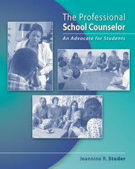 Professional School Counselor