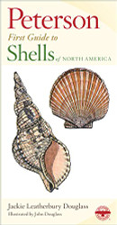 Peterson First Guide To Shells Of North America