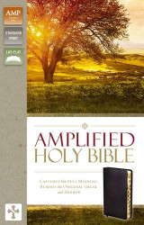 Amplified Holy Bible Bonded Leather Black Indexed