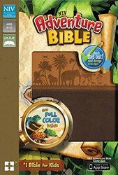 NIV Adventure Bible Imitation Leather Brown Full Color