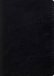 Large Print Study Bible English Standard Version