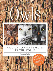 Owls A Guide to Every Species in the World
