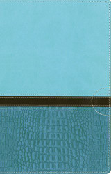 NIV Women's Devotional Bible Imitation Leather Blue