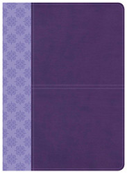Csb Study Bible Purple Leathertouch