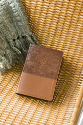 Amplified Study Bible Leathersoft Brown Indexed