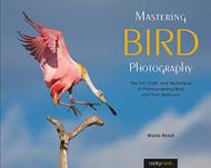 Mastering Bird Photography