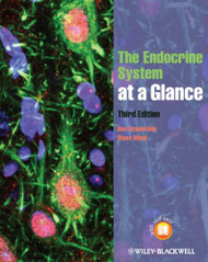 Endocrine System at a Glance