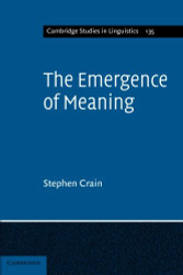 Emergence of Meaning