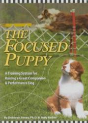Focused Puppy