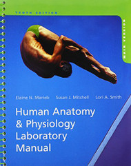 Human Anatomy And Physiology Laboratory Manual Main Version by Marieb