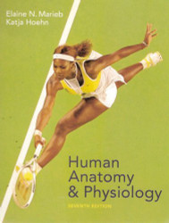 Human Anatomy & Physiology  by Elaine Nicpon Marieb