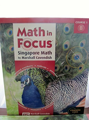 Math In Focus Volume B Grade 6
