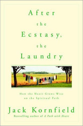 After The Ecstasy The Laundry