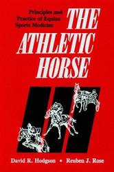 Athletic Horse