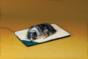 Allied Precision API 12PB-L Large Heated Pet Bed