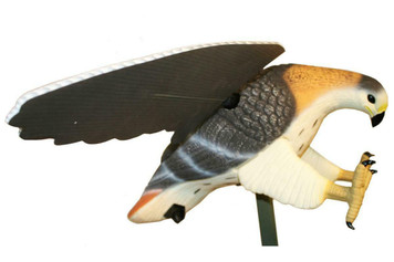MOJO Outdoors HW4310 Hawk Predator Hunting Decoy