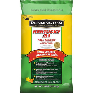 DLF Pennington Seed 100516050 Kentucky 31 Tall Fescue Grass 5 lb Bag