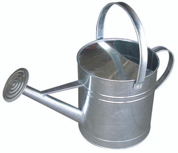 Little Giant GWC10 Galvanized 10 Qt. Watering Can