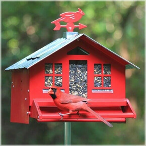 Perky  Squirrel Be Gone Country Style Pesk Resistant Wild Bird Feeder