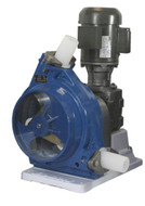 Blue Series Peristaltic - 2HP (286EP-2HP)