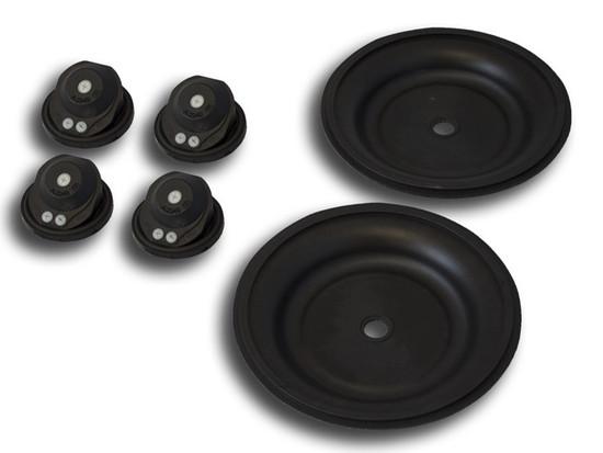 Spares Kit - Viton - for Double Diaphragm Pump 25283