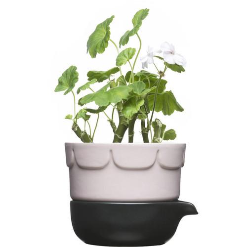 Sagaform Green Herb Pot - Pink (5016675)
