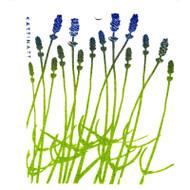 Swedish Dishcloth - Lavender (56123)