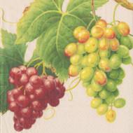 Vineyard Parchment Paper Cocktail Napkins (12440C)