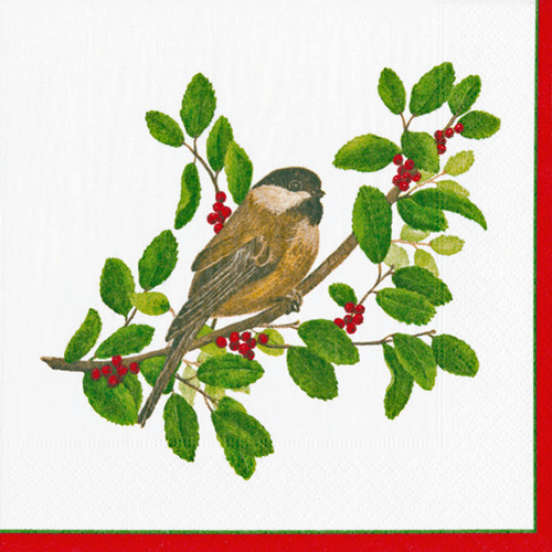 Winter Songbirds Paper Napkins and Plates (14020)