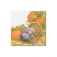 Thanksgiving Harvest Paper Cocktail Napkins - 20 PK (14910C)