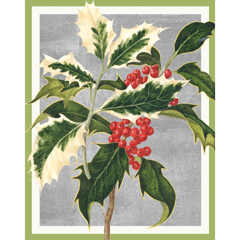 Caspari Christmas Cards.Holly Christmas Card Box A Size 16 In
