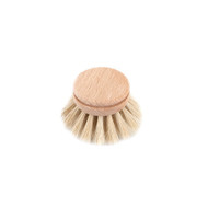 Dishbrush Refill (1101-01)
