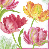Tulip Dance Paper Cocktail Napkins (11750C)