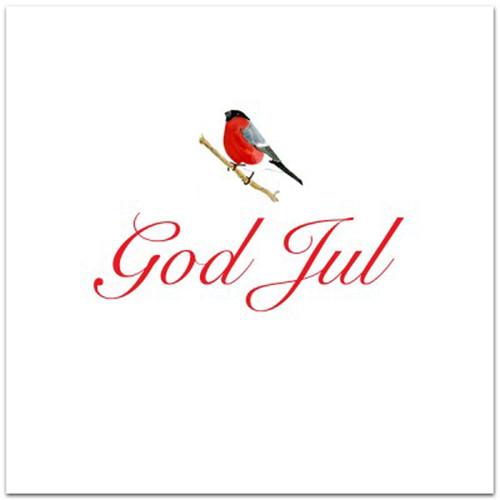 Domherre God Jul Card - Blank w/Envelope (A168)
