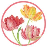 Tulip Dance Paper Salad/Dessert Plates (11750SP)
