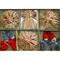 Straw Ornament Assortment - 22 Pc's (H1-3509)