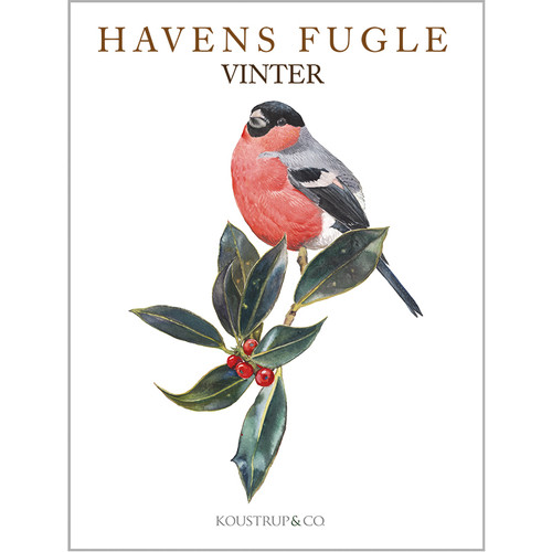 Notecard Folio - Winter Birds - Havens Fugle (68-HAVENS)