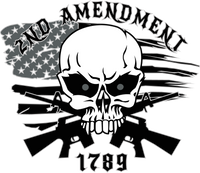 2nd amendment 8x7 window sticker black
