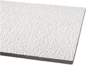 """ARMSTRONG® ACOUSTICAL CEILING TILE 860 ARMATUFF HUMIGUARD PLUS SQUARE LAY IN, 24X48X3/4"""", 8 PER CASE 296354"""