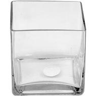 Viz Floral Viz 5x5x5 floral glass cube