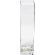 Viz Floral 2x2x10 rectangular glass vase