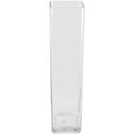 Viz Floral 5x5x14 rectangular glass vase
