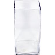 Viz Floral 6x6x12 rectangular glass vase