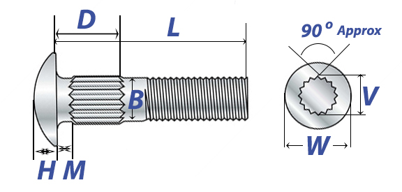 Carriage Bolts: Dimensions & Mechanical Properties | AFT Fasteners