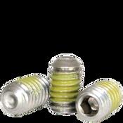 "#10-24x3/8"" Socket Set Screws Cup Point Coarse 18-8 Stainless w/ Nylon-Patch (1,000/Bulk Pkg.)"