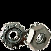 #12-24 External Tooth Keps Locknut, Zinc Cr+3 (5000/Bulk Pkg.)